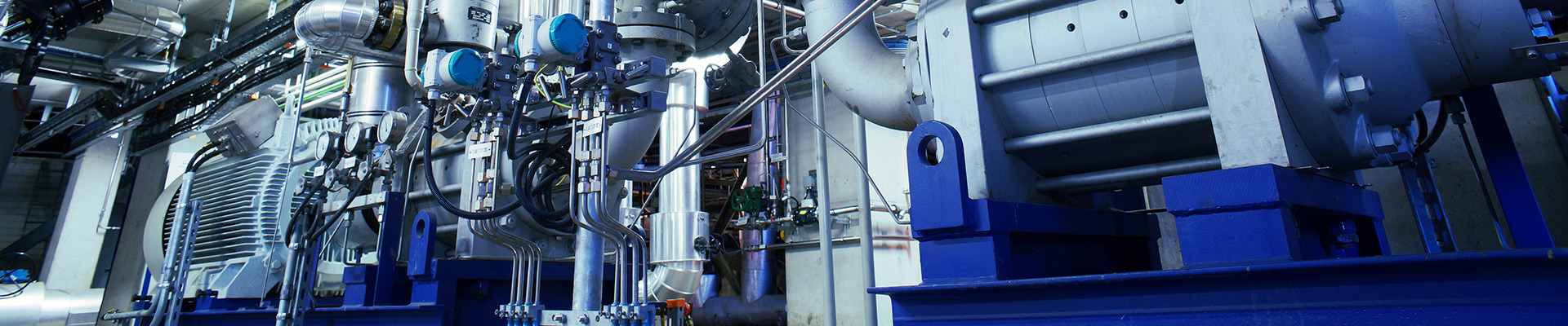 Pumps packaged Systems Skids and Ballast Water Treatment Systems